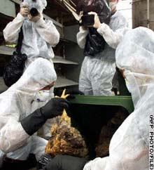Hong Kong has been hit by a series of scares over bird flu.