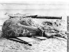 The blob found in 1896 remains unidentified. But some believe it was part of a whale.