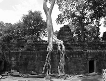 For centuries after its fall the city of Angkor was abandoned to the jungle