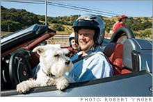 car_dog.jpg