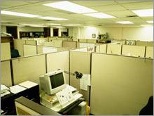 cubicle.03.jpg