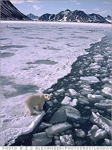 arctic_oil.03.jpg