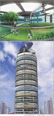 sky_farming.03.jpg