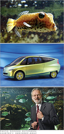 fish_car_gurtler.03.jpg